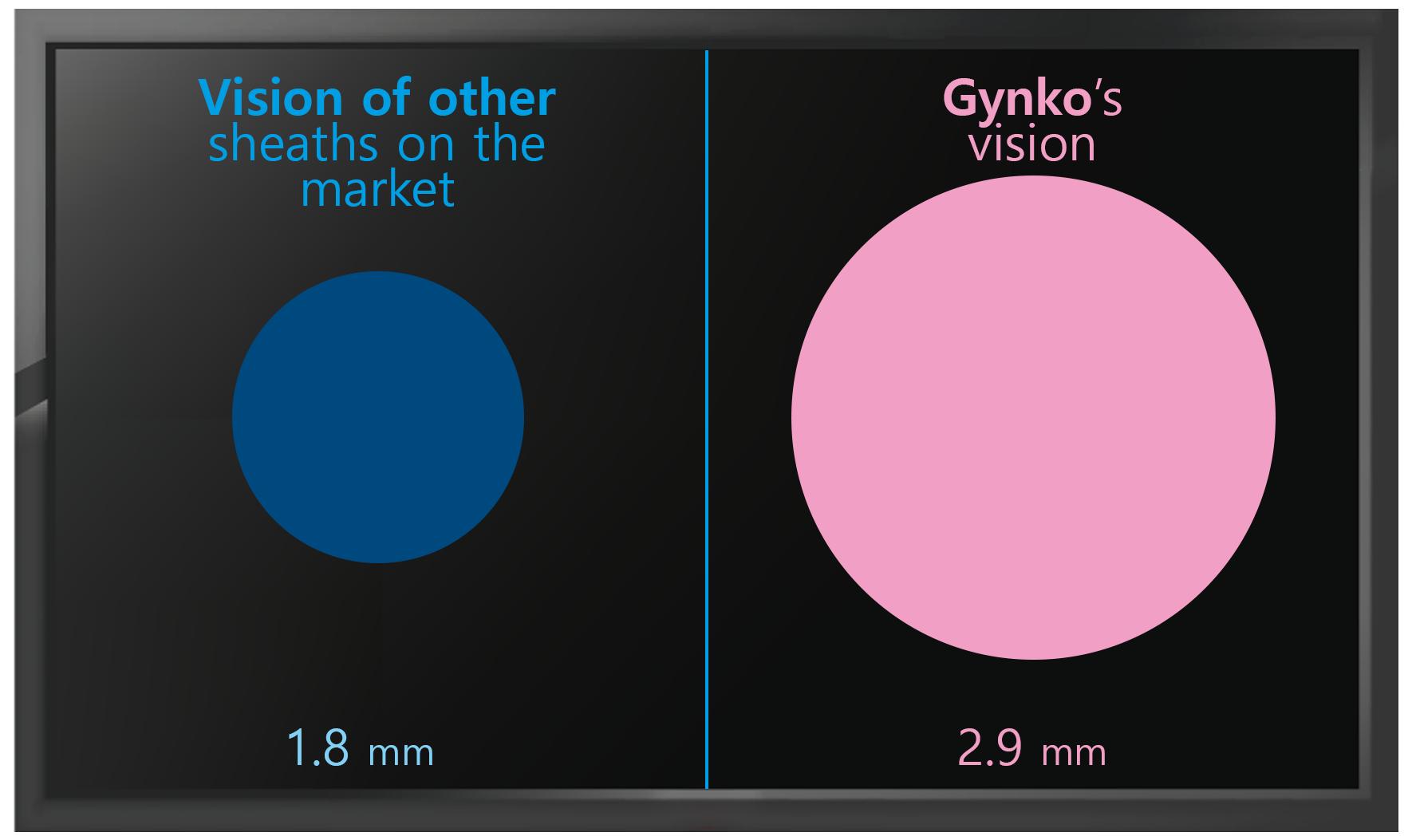 gynko-monitor
